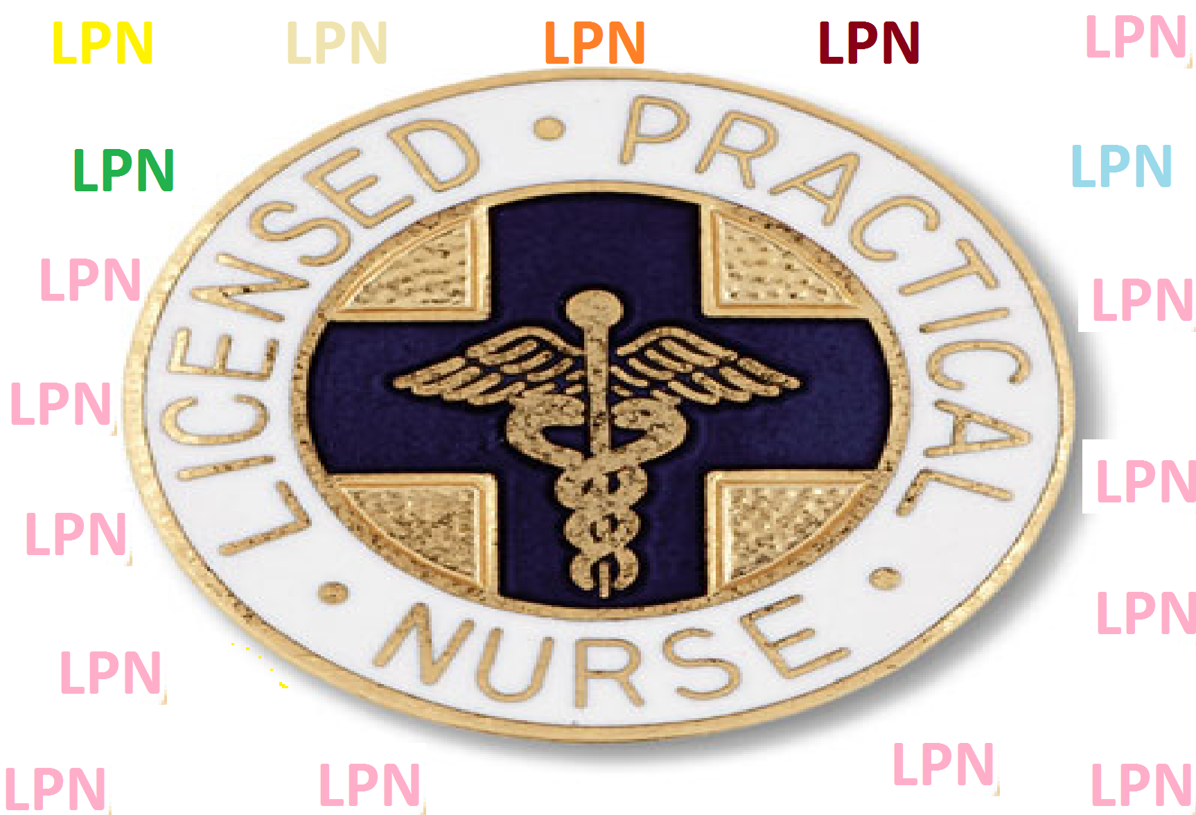 Licensed Practical Nurse (LPN) best college majors